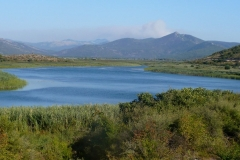 hutovo-blato-herzegovina
